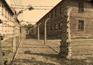 Auschwitz Birkenau tours